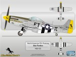 Warbirds P51 N1CS by Scheme Designers